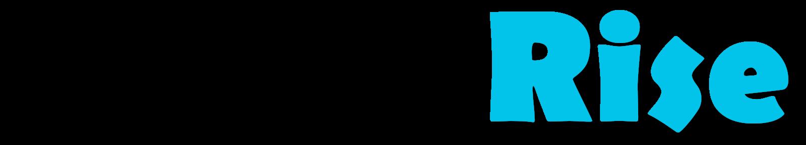 🏆 BrandRise | Pozycjonowanie Stron Toruń, Strony Internetowe, Strony WWW, agencja SEO